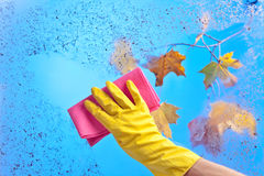 Hand in rubber glove cleaning window on a blue sky background Stock Images