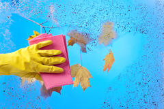 Hand in rubber glove cleaning window on a blue sky background Royalty Free Stock Images
