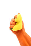 Hand in a rubber glove holding domestic sponge. Stock Photos