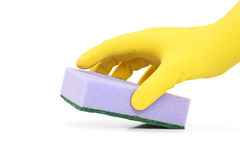 Hand with a rubber glove holding a sponge royalty free stock image