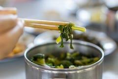 Hand - rymd inlagd grönsak i rostfritt stålmatbärare med pinnar royaltyfri bild