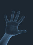 Hand's X-Ray. A scan small hand with look as a X-Ray royalty free illustration