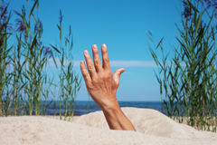 Hand in sand. Stock Images