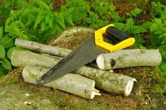 Hand-saw et bois de chauffage Photographie stock libre de droits