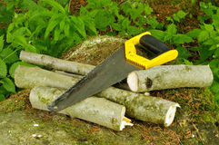 Hand-saw y leña Fotografía de archivo libre de regalías