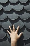 Hand on scale shaped shingles. Stock Photos