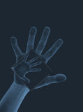 Hand Scan. An illustration of a hand scan holding another scan of a hand Royalty Free Stock Photos