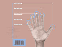 Hand scan. Image of biometrics/cybernetic hand being scanned Royalty Free Stock Image