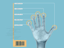Hand scan. Image of biometrics/cybernetic hand being scanned Royalty Free Stock Images
