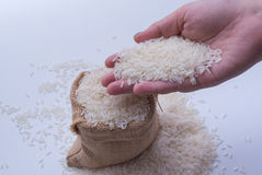 Hand scoop rice grain in sack Royalty Free Stock Photos
