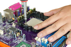 Hand screwing bolt. Into mainboard Royalty Free Stock Photos