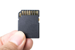 Hand with SD card isolate on white background Stock Photography