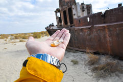 Hand with seashells on a background of ship in the desert Stock Photo