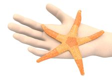 Hand with seastar Stock Photo