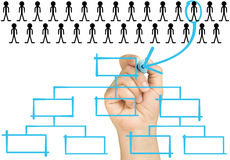 Hand Selecting Candidate Organizational Chart Royalty Free Stock Photo