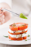 Hand serving a basil leaf on mozzarella and tomato slices close- Royalty Free Stock Photo