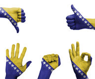 Hand set with the flag of bosnia and Herzegovina Stock Photography