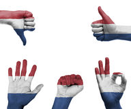 Hand set with the flag of Netherlands. A set of hands with different gestures wrapped in the flag of the Netherlands Royalty Free Stock Photo