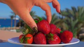 Hand setzt eine große saftige Erdbeere von einer Platte stock video footage