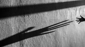 Hand shadow Stock Photo