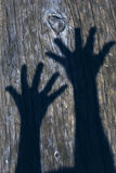 Hand Shadows Royalty Free Stock Photography