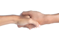 Hand shake Stock Images