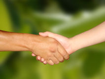 Hand Shake royalty free stock image