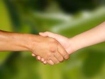 Hand Shake. In green bg Royalty Free Stock Image