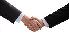 Hand shake. royalty free stock images