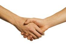 Hand-shake Stock Photo