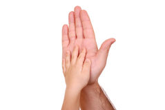 Hand shake of the child and father Stock Image
