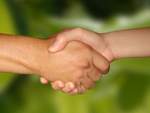 Hand Shake & Contract. Corporate Deal, man and a woman shake their hands stock photo