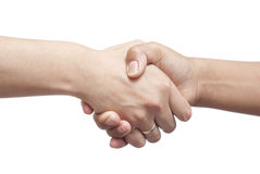 Hand shake Stock Photography