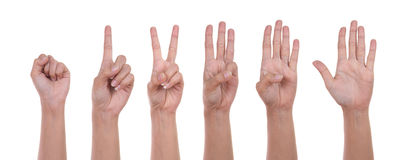 Hand show the number one Royalty Free Stock Image