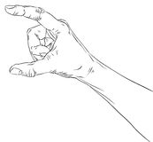 Hand showing big value, or use it to put some object between the. Fingers, detailed black and white lines vector illustration, hand drawn Stock Image