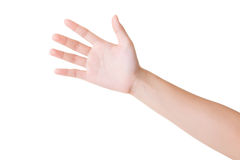 Hand showing five fingers Royalty Free Stock Image