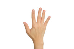 Hand showing the five fingers Royalty Free Stock Photos