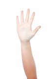 Hand showing number five stock image