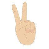 Hand, showing number two on white background. Vector illustration Royalty Free Stock Photo