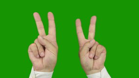 Hand sign: The symbol of victory. Alpha channel is included Royalty Free Stock Images