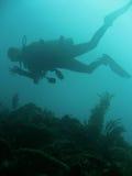 Hand signals scuba diver sipadan Royalty Free Stock Images