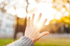 Hand silhouette against sunset The rays of the sun between your royalty free stock images