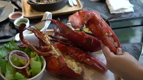 Hand size with lobster claw photo before eating. 4k stock video footage