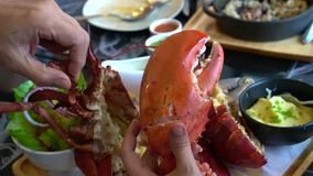 Hand size with lobster claw photo before eating social trend. HD stock footage