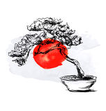 Hand sketch bonsai and watercolor Japanese flag Stock Image