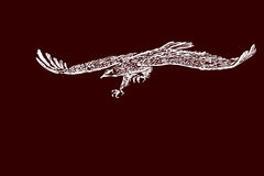 Hand  sketch of a eagle in flight. Stock Image