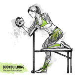 Hand sketch of a girl is training with dumbbells. Vector sport illustration. Stock Images
