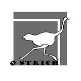 Hand sketch of ostrich, draw. Hand sketch of ostrich. funny ostrich draw Stock Photography