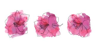 Hand sketched color set of rhododendron stock images