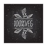 Hand-sketched typographic element Royalty Free Stock Image